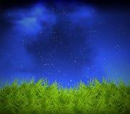 Gras auf einem Hintergrund des nächtlichen Himmels Stockfotos