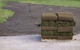 Gras auf einer Palette Stockbilder