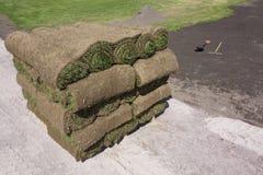 Gras auf einer Palette Lizenzfreies Stockbild
