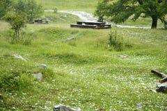 Gras bedeckt in den Eisbällen nach Hagelsturm Lizenzfreie Stockfotos