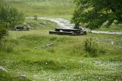 Gras bedeckt in den Eisbällen nach Hagelsturm Lizenzfreie Stockbilder
