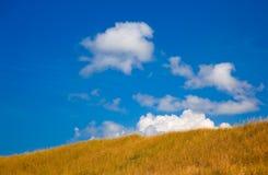 Gras behandelde heuvel met blauwe hemel Royalty-vrije Stock Fotografie