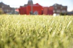 Gras-Beschaffenheit mit Gebäude Lizenzfreies Stockfoto