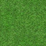 Gras-Beschaffenheit - nahtlos Stockfoto