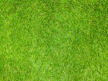 Gras-Beschaffenheitshintergrund Lizenzfreie Stockfotografie
