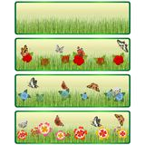 Gras, bloemen en vlinders Stock Fotografie