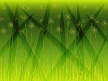 Gras-Blumen-Hintergrund Stockfotos