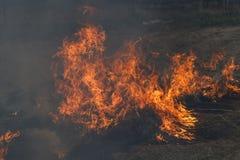 Gras brennt auf der Stra?e das Feuer ist sehr gro? gew?hnlicher Bewohner, der versucht, das Feuer mit einer Heugabel auszul?schen lizenzfreie stockfotografie