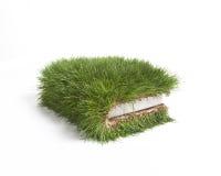 Gras-Buch Stockbild