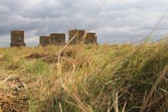 Gras, chmury i kamieni bloki, Obraz Royalty Free
