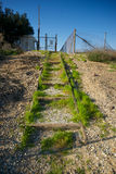 Gras, das auf Kies-Jobstepps wächst Lizenzfreie Stockfotografie