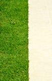 Gras, das zwischen den Steinen heranwächst Lizenzfreie Stockbilder