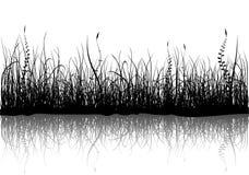 Gras - dat op wit wordt geïsoleerd stock illustratie