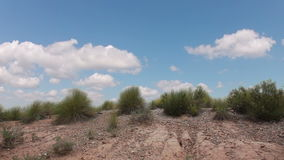 Gras in de woestijn en de wolken stock video