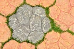 Gras in den Löchern des Ziegelsteinmusters Lizenzfreie Stockbilder