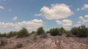 Gras in der Wüste und in den Wolken stock video