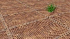 Gras door de roestige metaalplaat die is ontsproten Royalty-vrije Stock Foto's