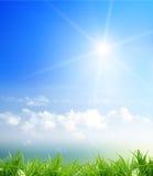 Gras en bewolkte hemel Stock Fotografie