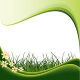 Gras en bloem Royalty-vrije Stock Afbeelding