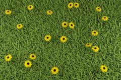 Gras en bloemen Stock Illustratie