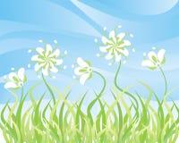 Gras en bloemen op een achtergrond van de hemel, vector royalty-vrije illustratie
