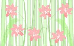 Gras en bloemenachtergrond Stock Afbeeldingen