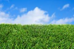 Gras en de hemel royalty-vrije stock afbeeldingen