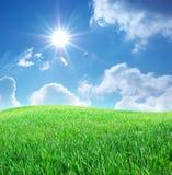 Gras en diepe blauwe hemel Stock Afbeelding