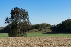 Gras en graan het stoppelveldlandschap in Weil, langs route riep Romantische Weg, Duitsland royalty-vrije stock fotografie