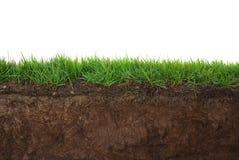 Gras en Grond Stock Afbeelding