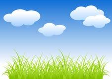 Gras en hemel. Stock Foto