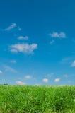 Gras en hemel Royalty-vrije Stock Foto's