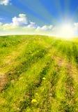 Gras en hemel Stock Foto