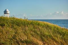 Gras en lage struiken op de kust met de oceaan en rotonde op de achtergrond Zeegezicht bij dageraad royalty-vrije stock afbeelding