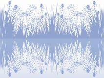 Gras en reflex op de waterspiegel Royalty-vrije Stock Afbeelding