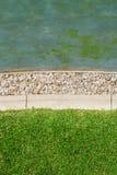 Gras en steen en waterachtergrond Stock Fotografie