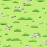 Gras en stenen Stock Afbeelding