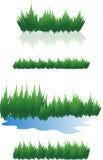 Gras en water Stock Foto