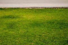 Gras en wegen Stock Fotografie