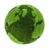 Gras-Erde stock abbildung