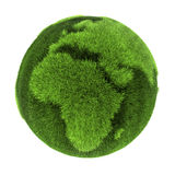 Gras-Erde - Europa und Afrika lizenzfreie abbildung