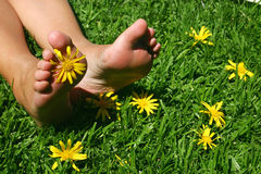 Gras-Füße Lizenzfreies Stockbild