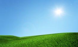 Gras-Feld Lizenzfreies Stockfoto