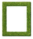 Gras-Feld stock abbildung