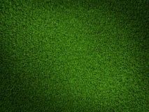 Gras-Feld Lizenzfreie Stockfotografie