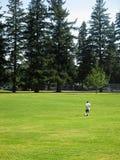 Gras-Feld, Fußball-Spieler Lizenzfreie Stockbilder