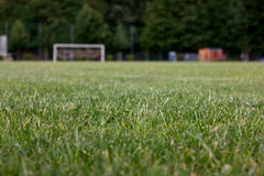 Gras-Fußball-Neigung Lizenzfreies Stockfoto
