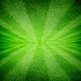 Gras groene aard Royalty-vrije Stock Foto