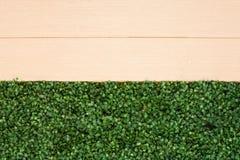 Gras-hölzerner Zaun Background Stockfoto