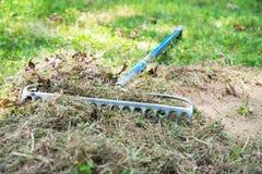 Gras harken, um für das Pflanzen von Samen vorzubereiten Stockfotos